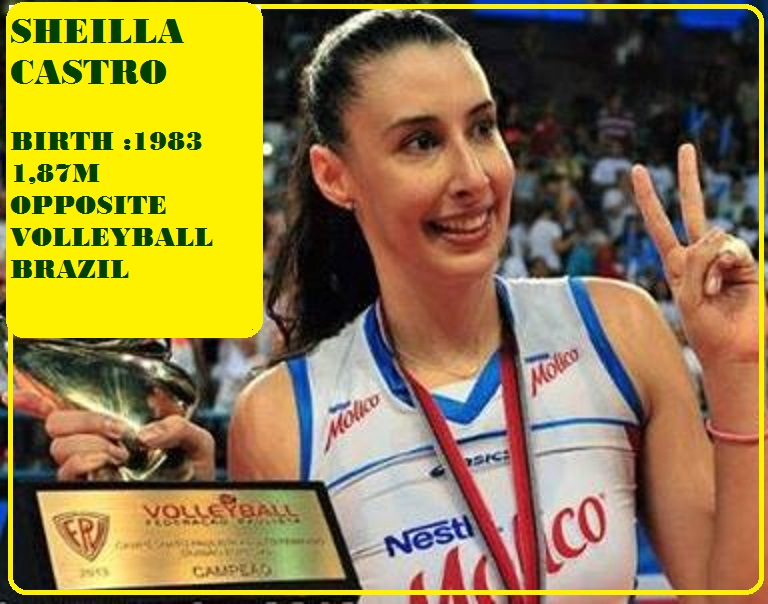 SHEILLA CASTRO : BEST OPPOSITE 2013 VOLLEYBALL PETIT-DIEULOIS